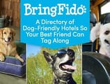 BringFido: A Directory of Dog-Friendly Hotels and Activities So Your Best Friend Can Tag Along on Your Next Travel Rewards Trip