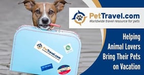 PetTravel.com: An In-Depth Resource That Helps Animal Lovers Redeem Their Travel Rewards without Leaving Their Furry Friends at Home
