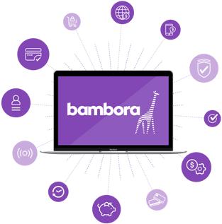 Screenshot of a Bambora graphic