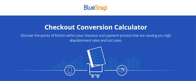 Screenshot of the BlueSnap conversion calculator