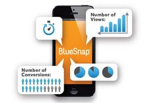 Screenshot of a BlueSnap graphic