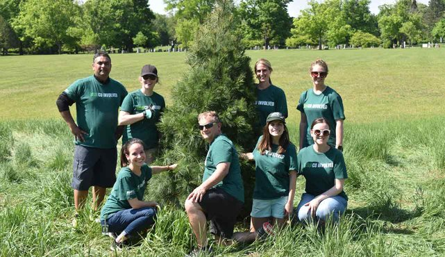 Photo of MSUFCU employees planting trees