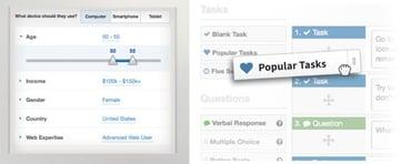 Demographics and Tasks Panel Screenshot