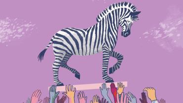 Screenshot of Zebra Movement logo