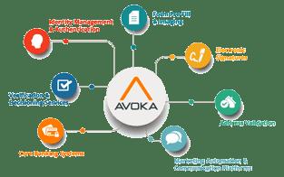 Avoka FinTech Solutions