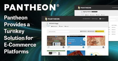 Pantheon: Why E-Commerce Platforms Choose This Turnkey Solution for Boosting Conversions, Scalability, and Uptime Without Traditional Server Worries