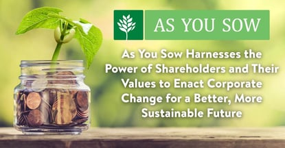 As You Sow Is Harnessing Shareholder Values For A Better Future