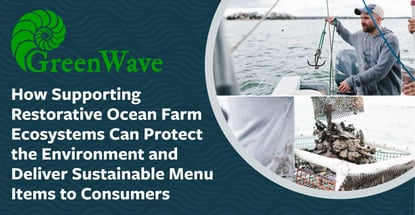 How Greenwave Restorative Ocean Farm Ecosystems Protect The Environment
