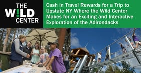 Cash in Travel Rewards for a Trip to Upstate NY Where the Wild Center Makes for an Exciting and Interactive Exploration of the Adirondacks