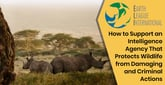 Earth League International: How to Support an Intelligence Agency That Protects Wildlife from Damaging and Criminal Actions