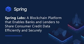 Spring Labs: A Blockchain Platform that Enables Banks and Lenders to Share Consumer Credit Data Efficiently and Securely
