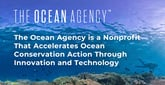 The Ocean Agency is a Nonprofit That Accelerates Ocean Conservation Action Through Innovation and Technology