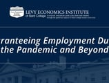 Exploring How a Government Job Guarantee Could Lead to Mass Mobilization and Faster Recovery in the Midst of the COVID-19 Crisis