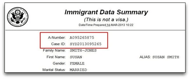 A Number on Immigrant Data Summary