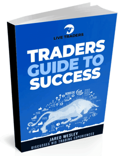 Traders Guide to Success Book