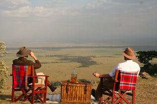 Safari Picnic Photo