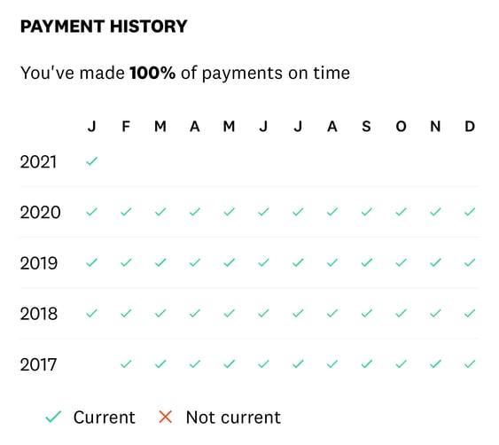 Screenshot of Credit Card Payment History