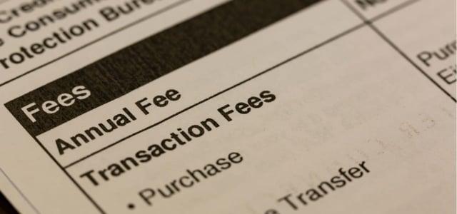 Schumer Box Annual Fee