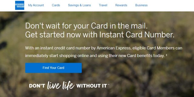 Screenshot of Amex Instant Card Number