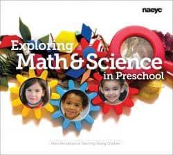 A Screenshot From NAECY's Math Website