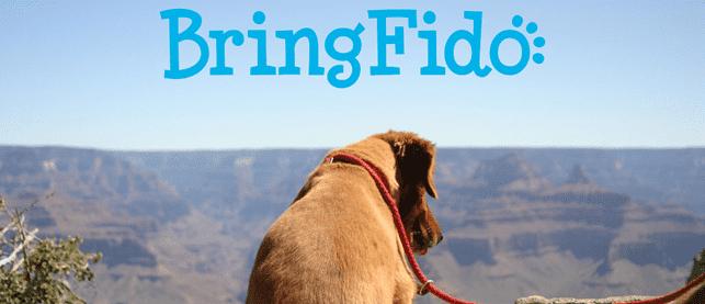 Photo of dog on vacation with BringFido logo