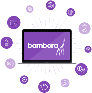 Screenshot of a Bambora graphic