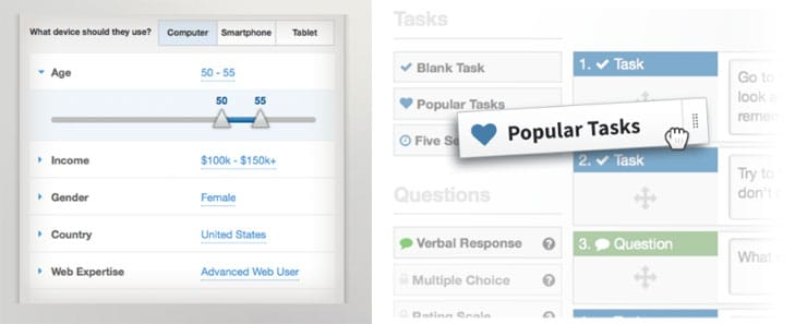 Demographics and Tasks Panel Screenshot