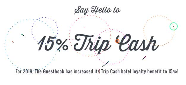 Trip Cash Graphic