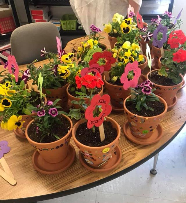 Photo of potted flowers headed to assisted living facilities